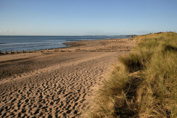 Dawlish Sand